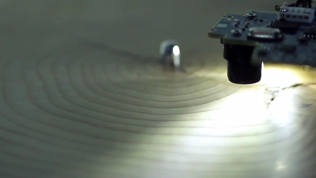 The Beautiful Record Made from Tree Rings