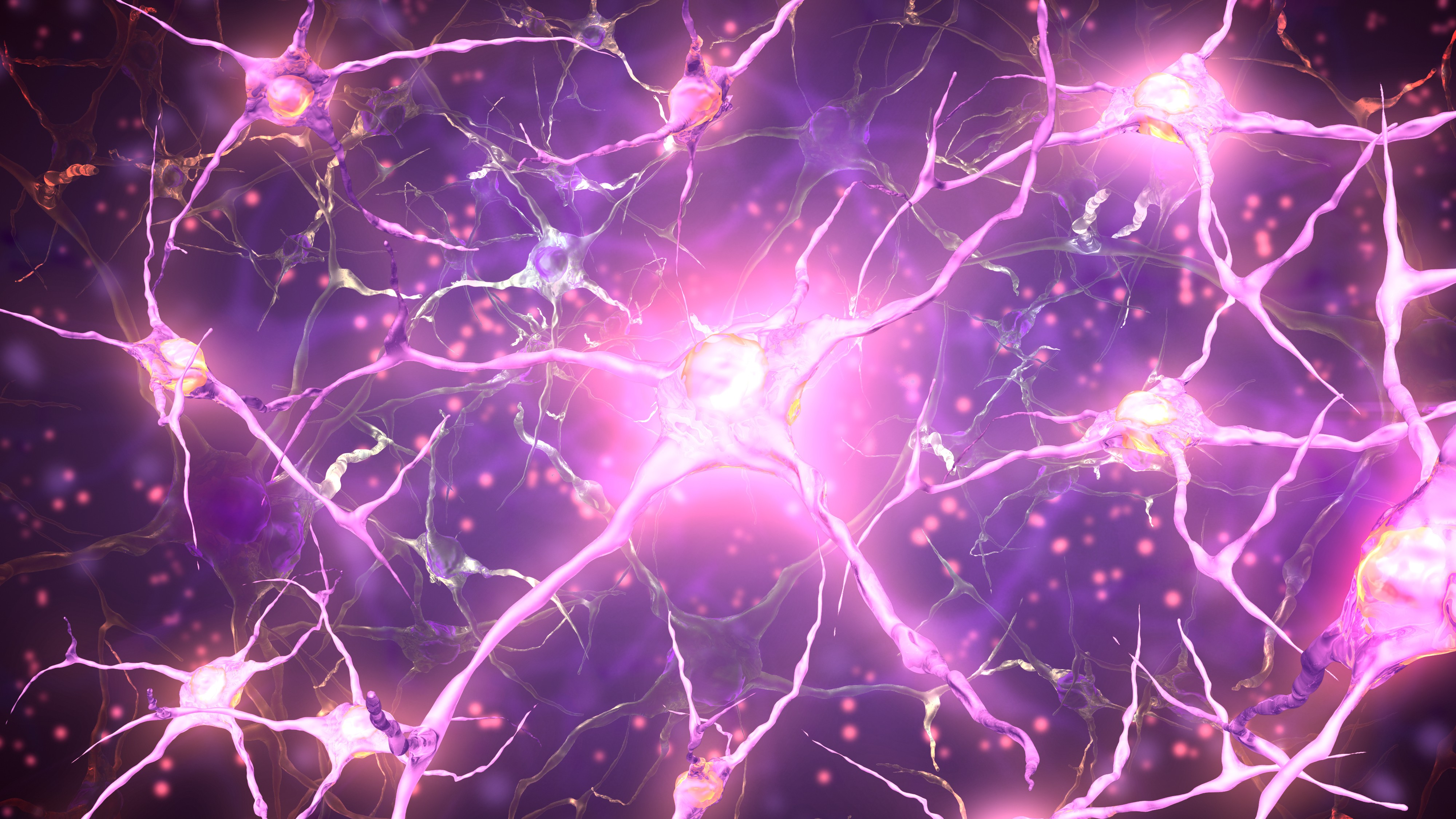 There Could Be Hope for Parkinson's Therapies in Neural Stem Cells