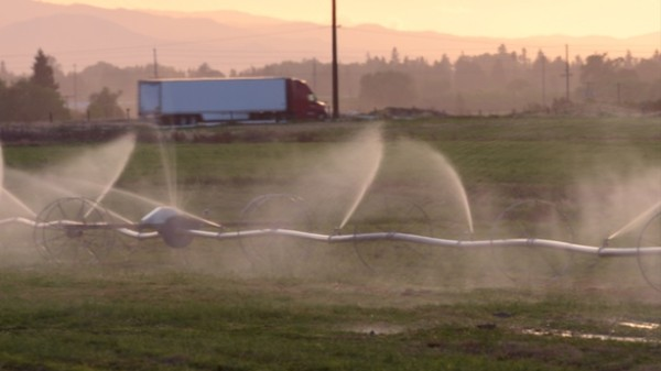 Drought-Stricken California Is Basically Running a Water Ponzi Scheme