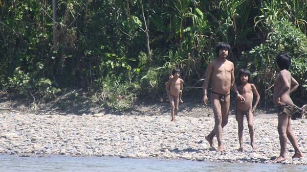 Tourists on 'Human Safaris' Are Harassing Uncontacted Peruvian Tribes