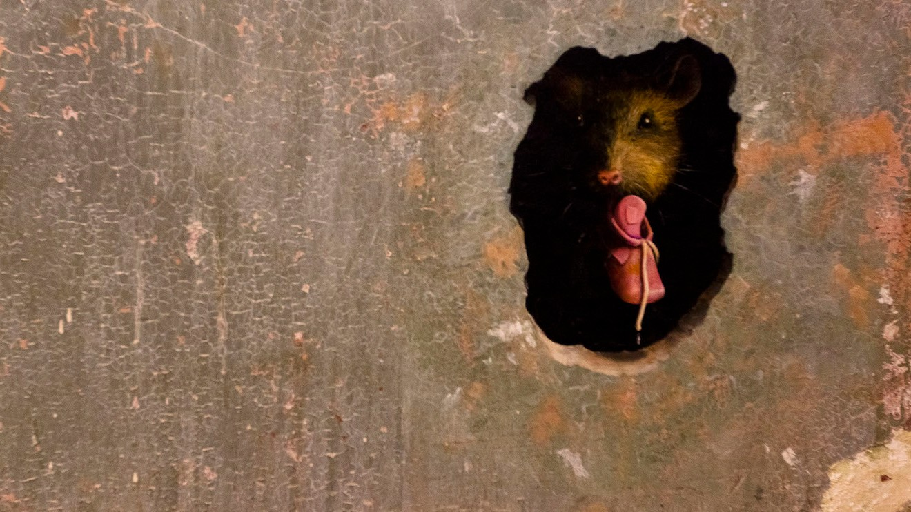 Good News: Humans Outnumber Rats in NYC, Four to One