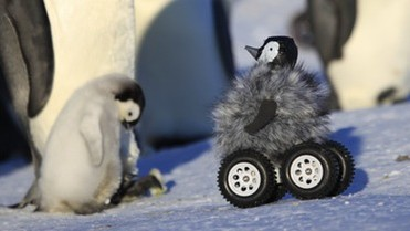 Designing an Adorable Penguin Rover is Really Hard