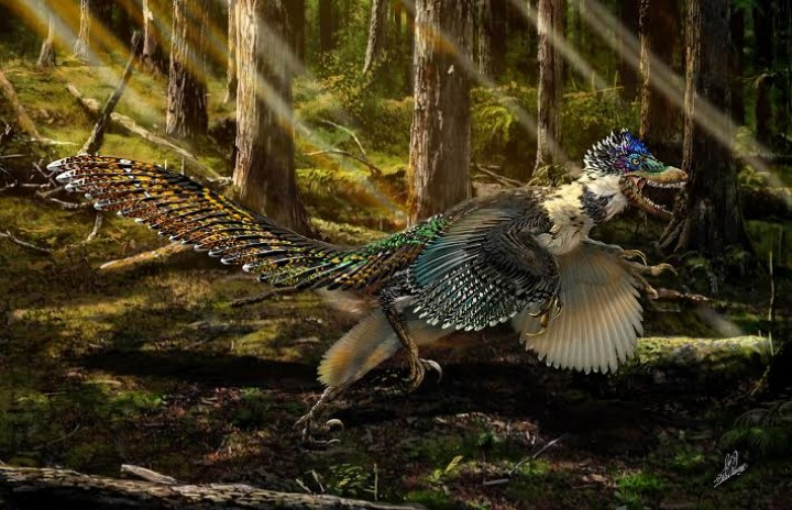 The Eight Best Extinct Species Discovered in 2015