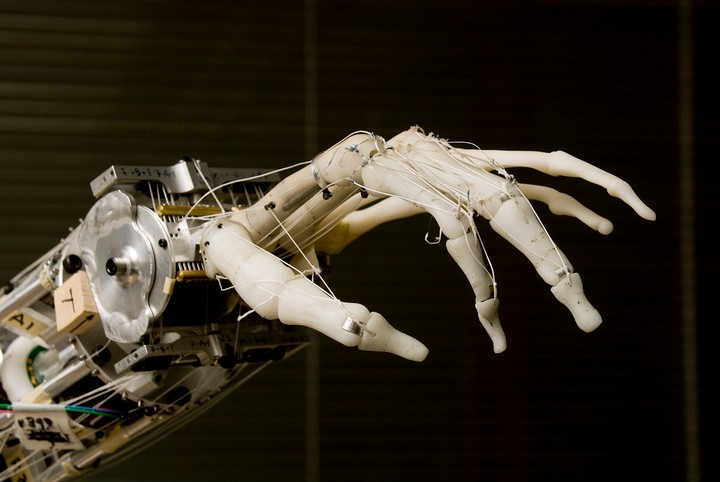 Google DeepMind Researchers Develop AI Kill Switch