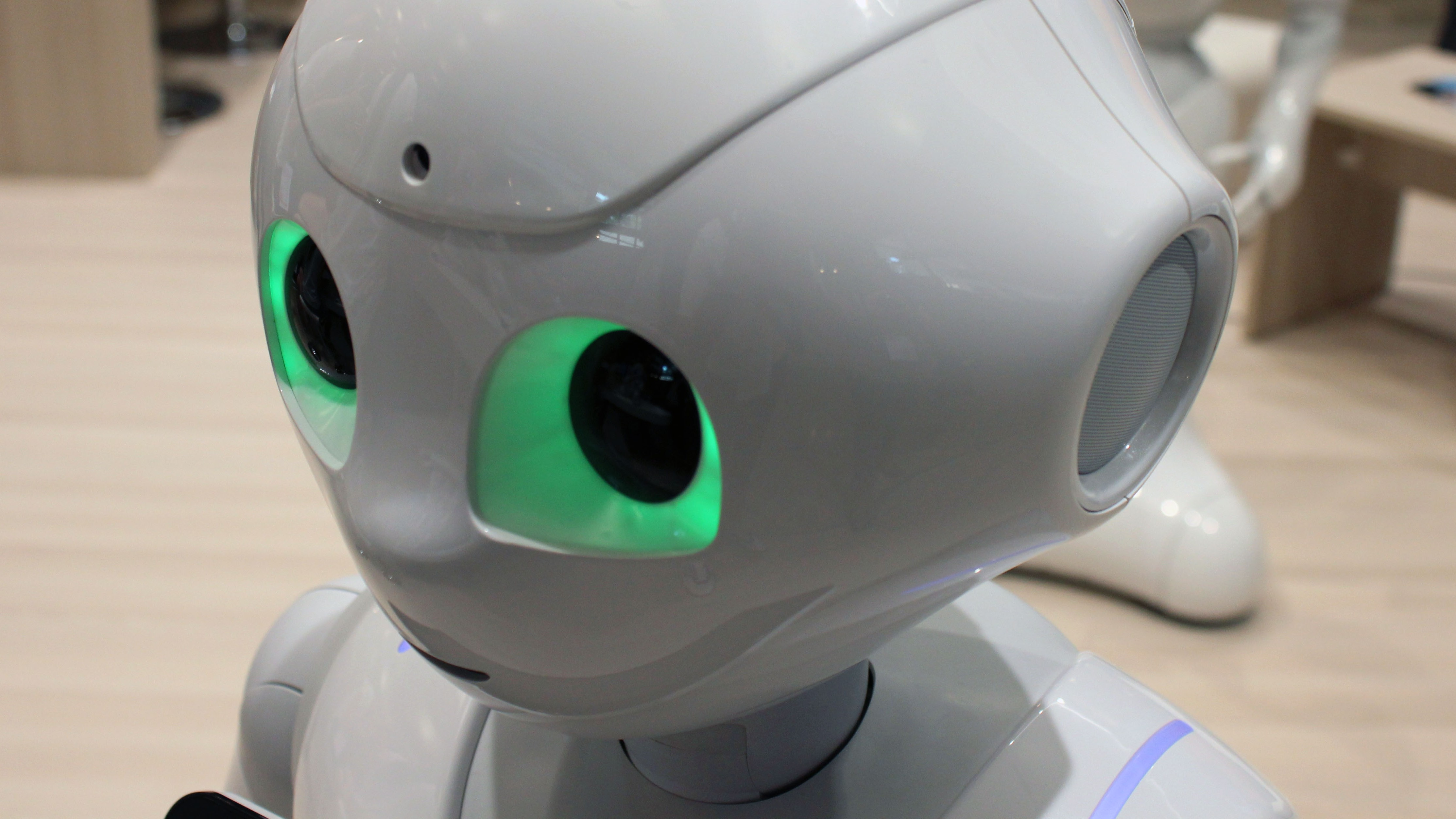 Your Smart Robot Is Coming in Five Years, But It Might Get Hacked and Kill You