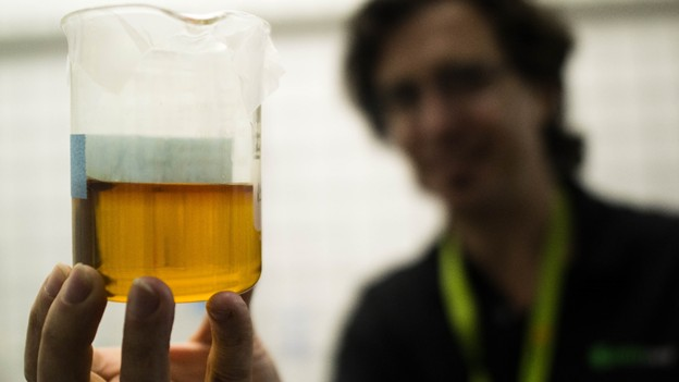 The Making of the Most Potent Weed Oil on the Market - Motherboard
