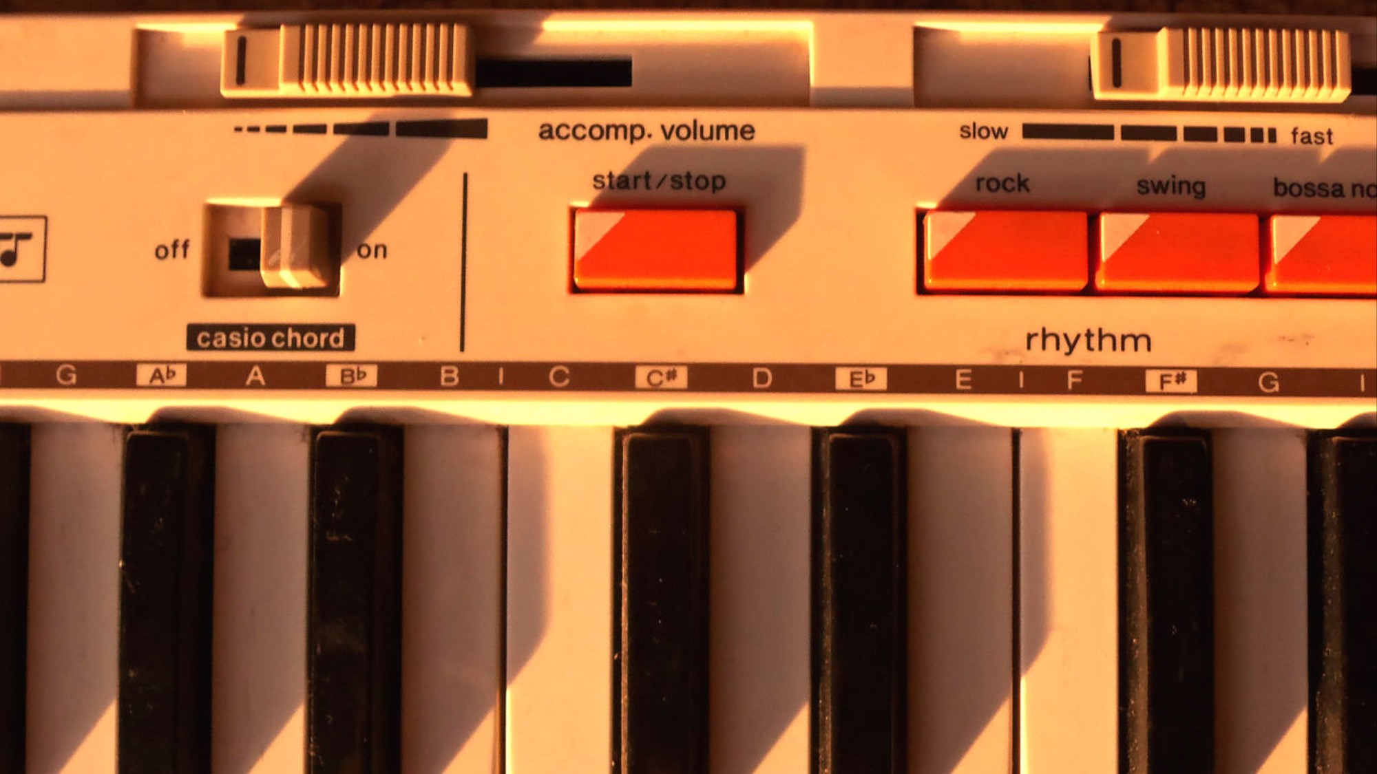 How Casio's Tinny Keyboards Quietly Inspired a Music