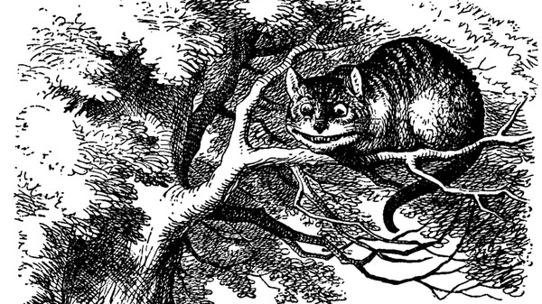 Move Over Schrödinger, the Quantum Cheshire Cat Is Here to Carve Up Reality