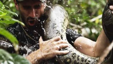 Yes, Forcing an Anaconda to Eat a Human on TV Is a Bad Idea