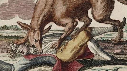 ​The Greatest Urban Animal Chases in History