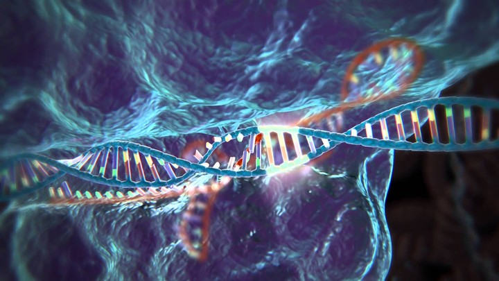 Accessible Synthetic Biology Raises New Concerns for DIY Biological Warfare
