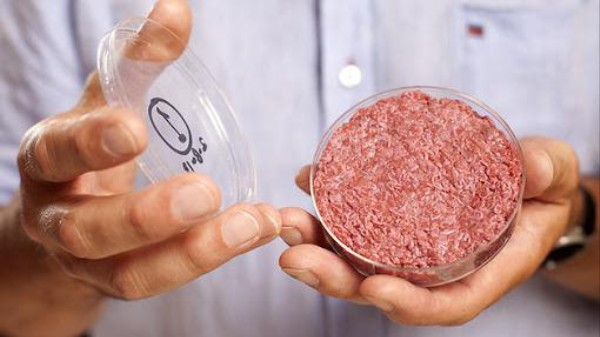 The In-Vitro Cookbook Will Help Us Prepare the Future Meat We Don't Have Yet