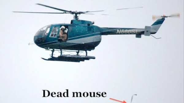 The Perfectly Reasonable, USDA-Backed Dead Mouse Parachute Drop