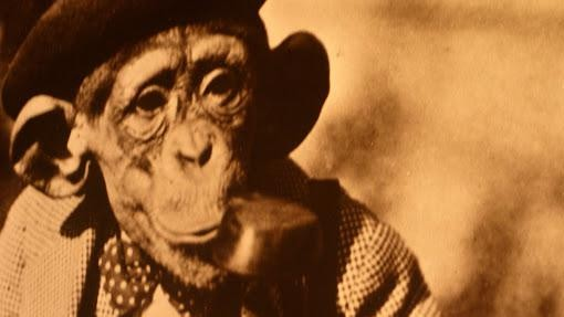 Was Bill Nye's Creation Debate The New Scopes Monkey Trial?