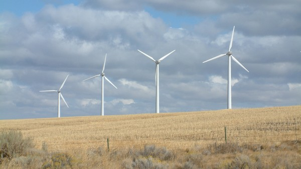 A Wind Turbine-Covered World Would Be Perfectly Safe