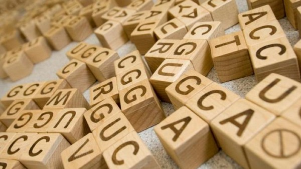 If We Can't Get Genome Accuracy Right, Personalized Medicine Is a Pipe Dream