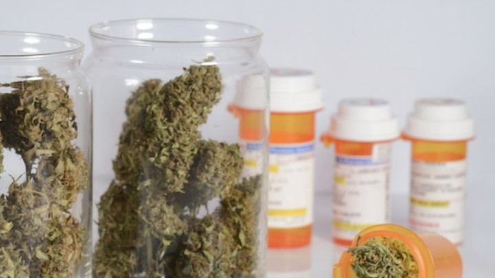 What Weed Means for the Future of Sustainable Healthcare
