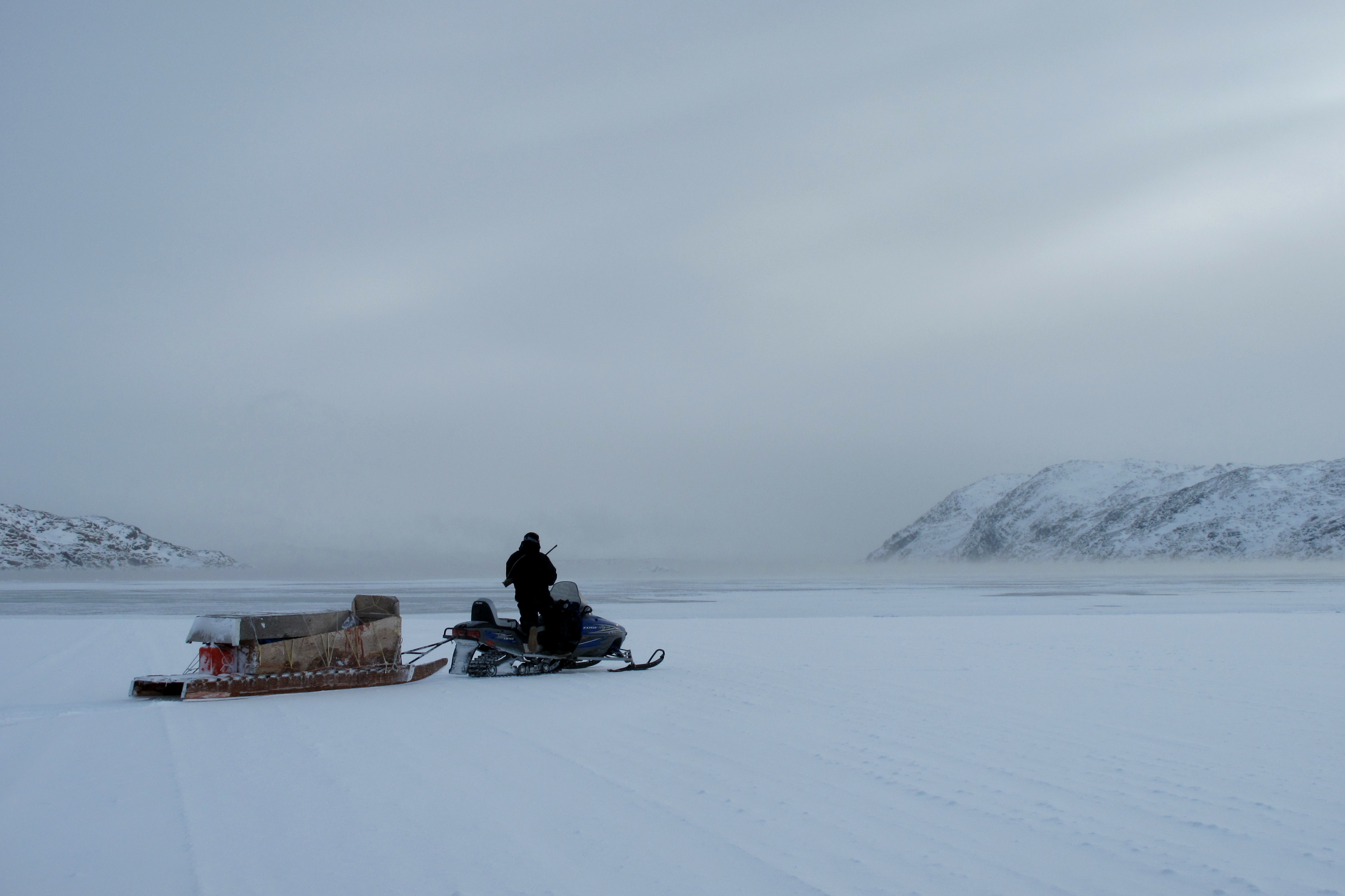 i went seal hunting in the canadian arctic motherboard
