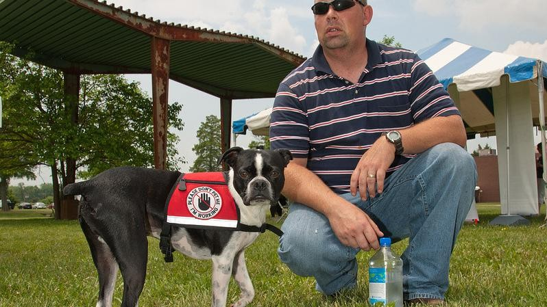 Of Dogs, Drugs, Drones, and Cocaine Science Fairs