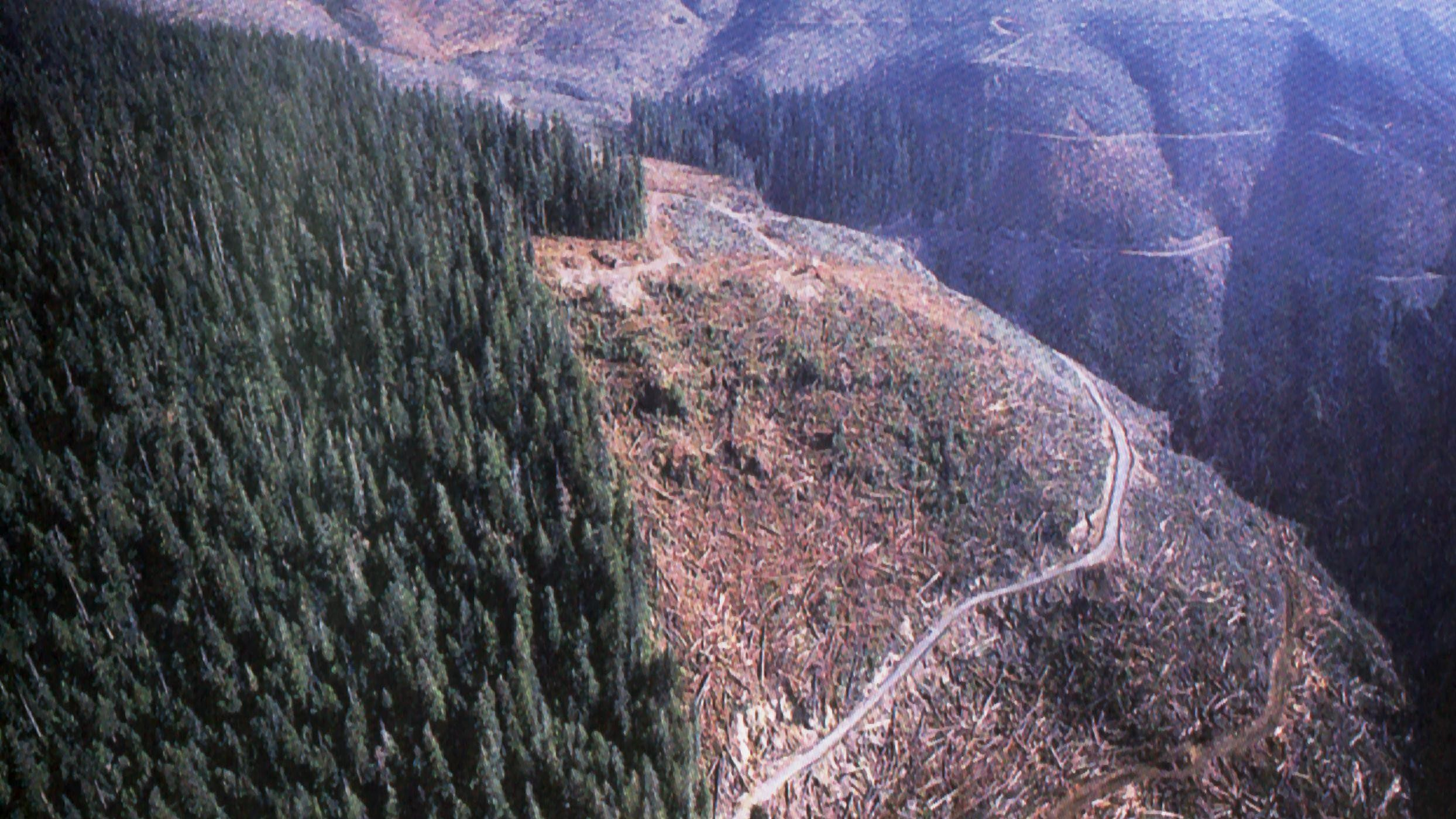 The U.S. Forest Service Predicts a Dry, Deforested America in 2060
