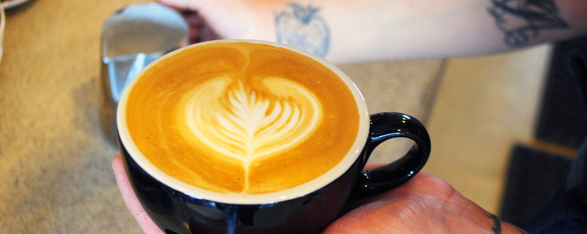 Espresso Is the Drug of Choice for Straight Edge Punks in San Diego