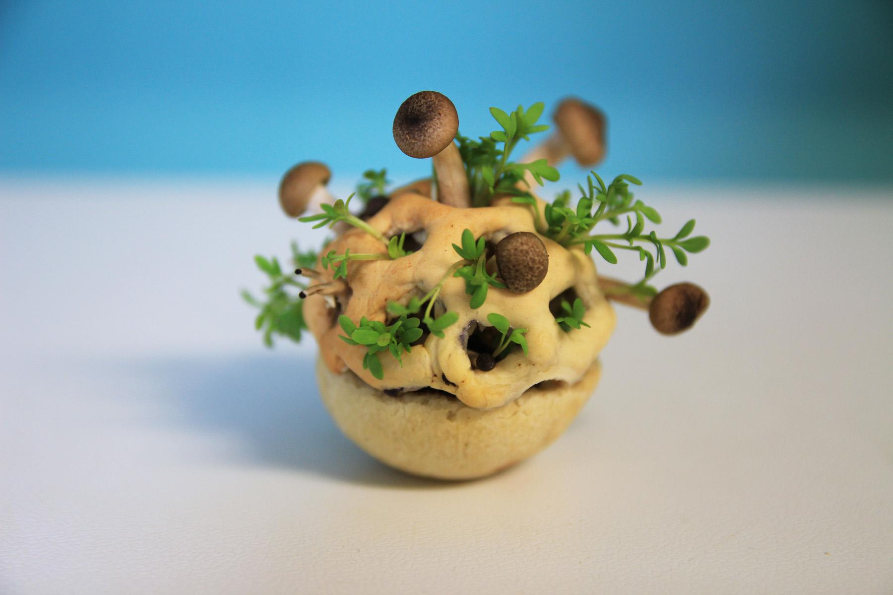 Edible prototype