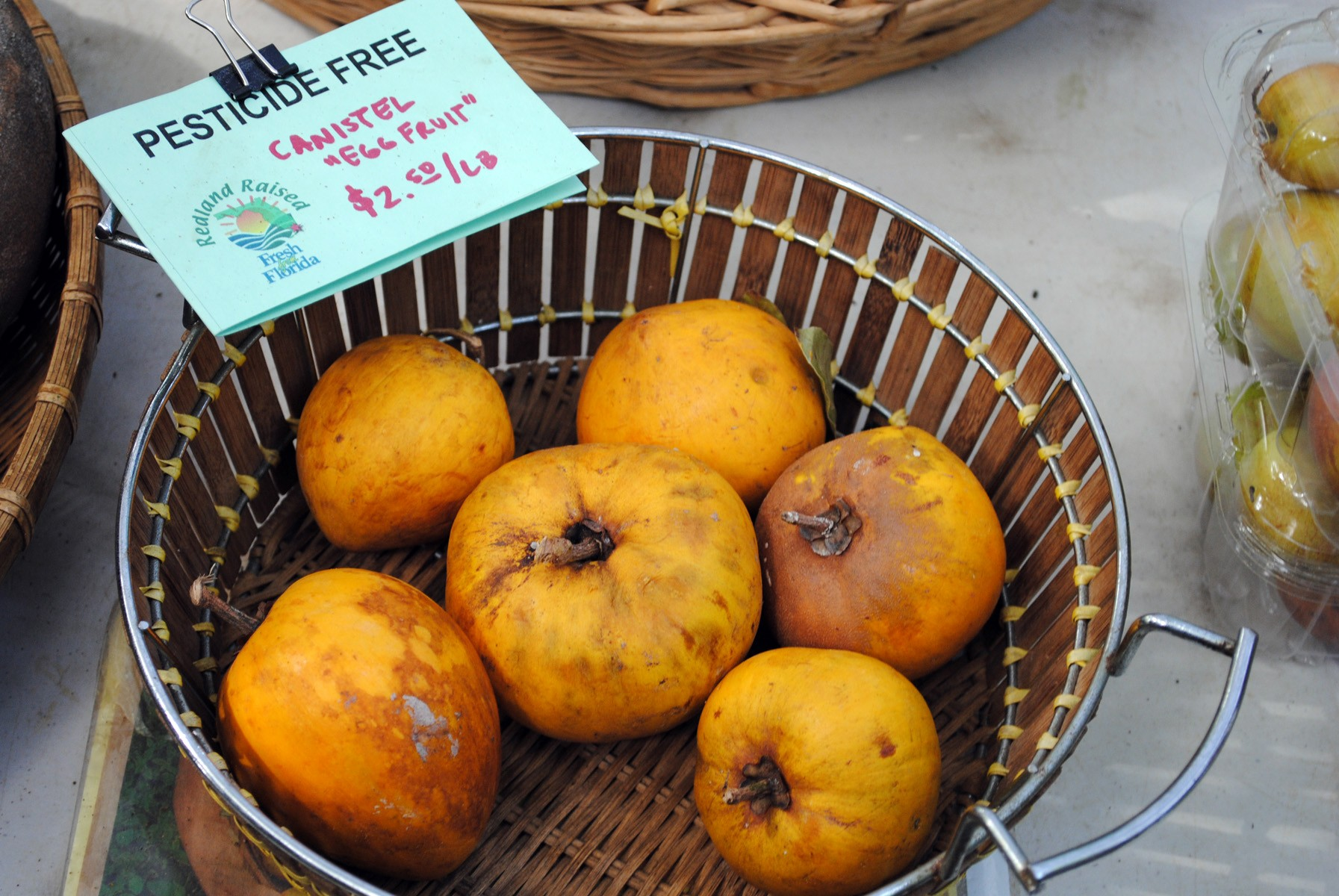 Exotic Fruit- Canistels at Pinecrest Farmers Market