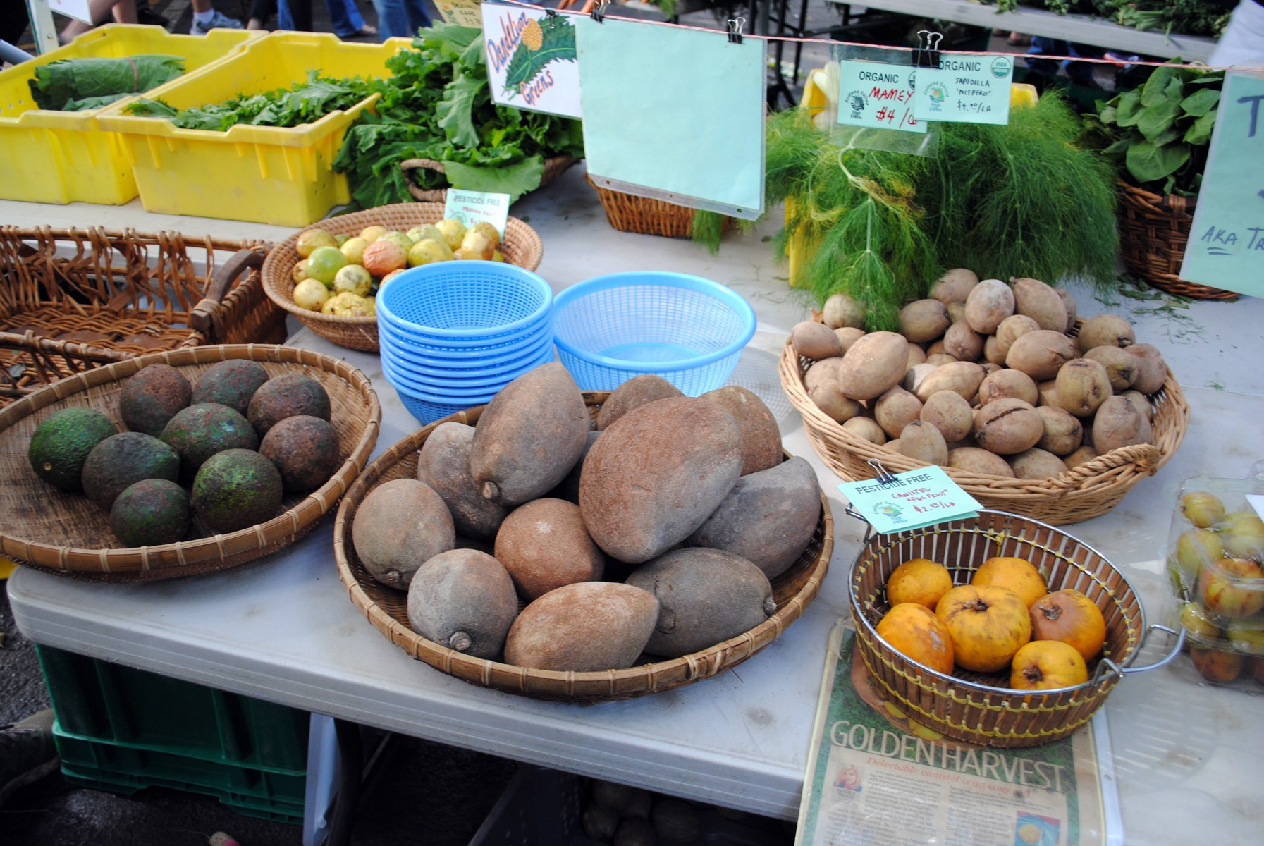 Exotic fruits -for sale at Pinecrest Farmers market in Miami