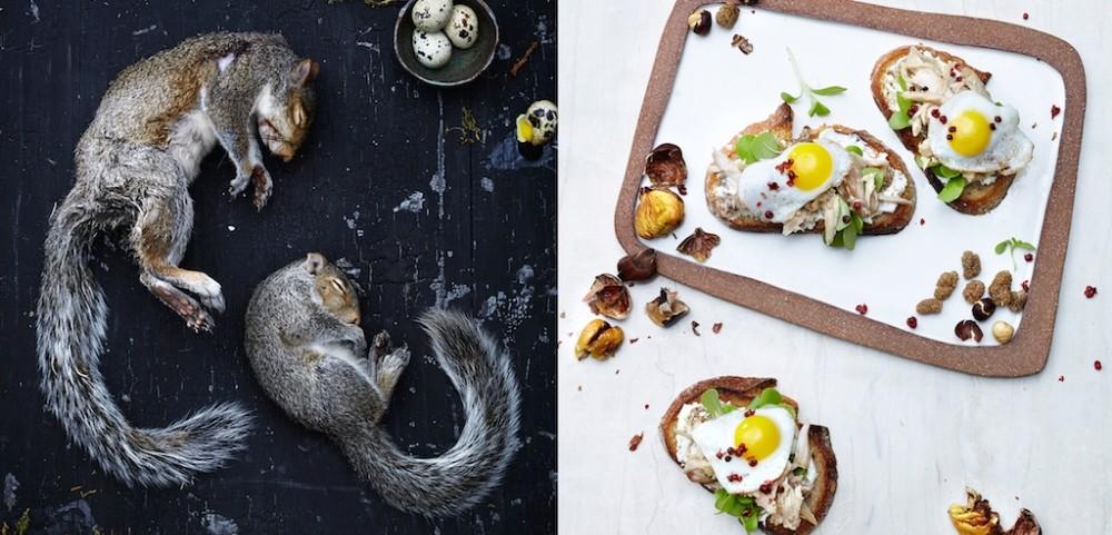 Squirrel crostini, white mulberry, goat cheese, hazelnut and purslane