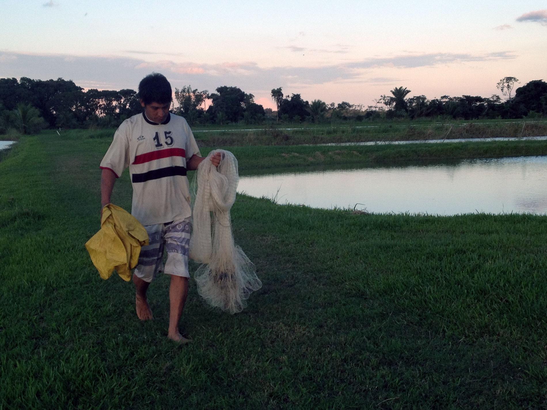 Preparing-to-harvest-clam