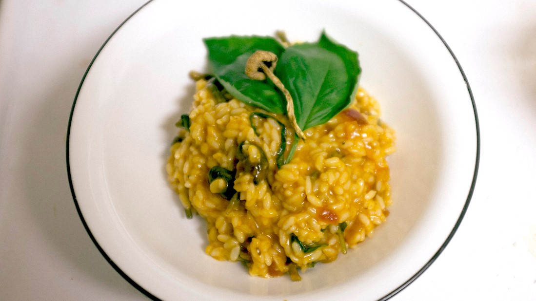 Shrooms_risotto_fin