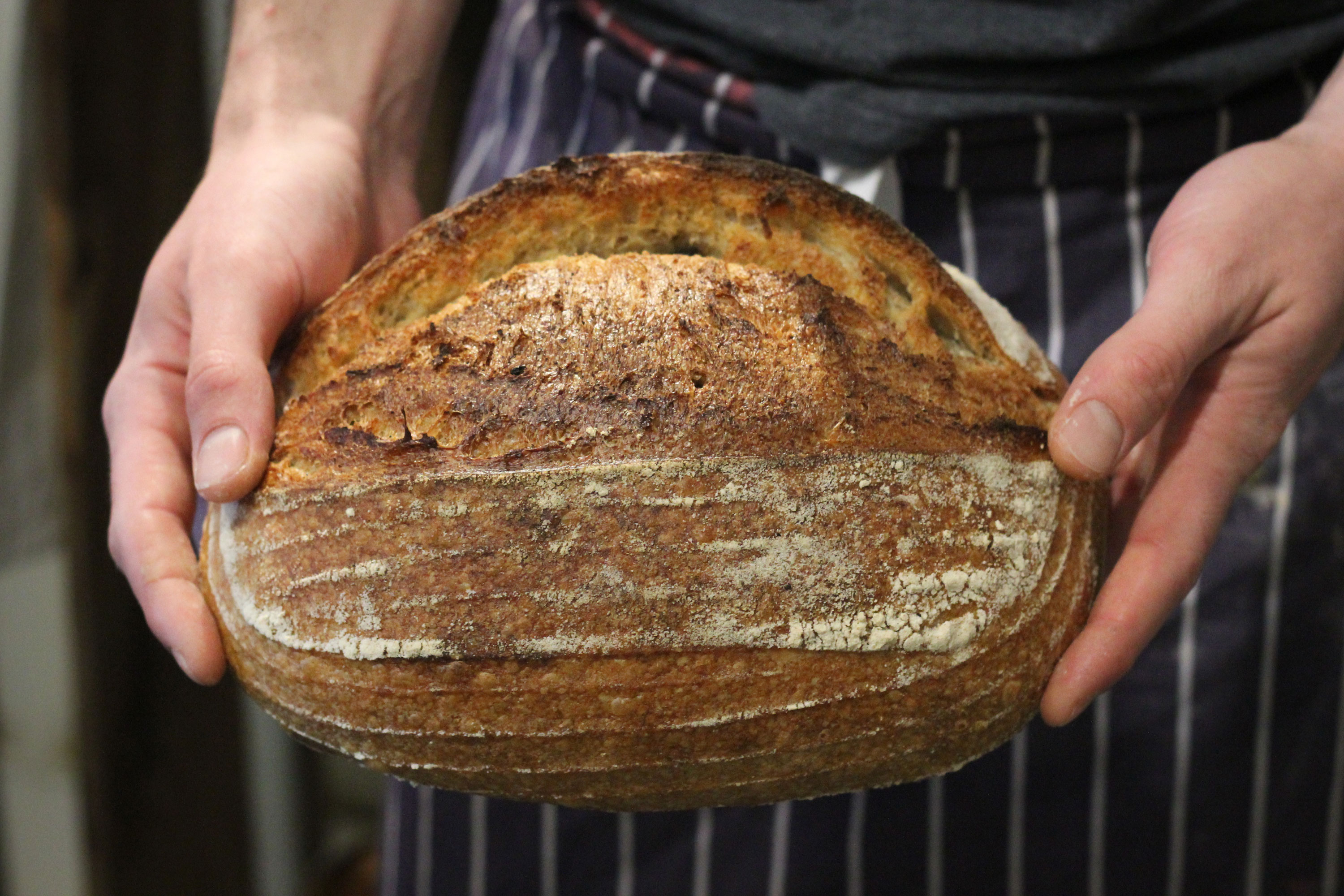 Sourdough-hands-E5bakehouse