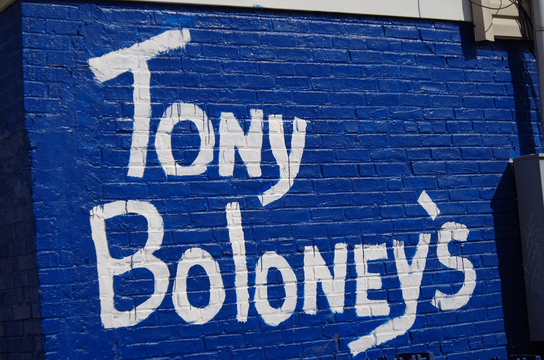 Tony-Boloney_outside_edit