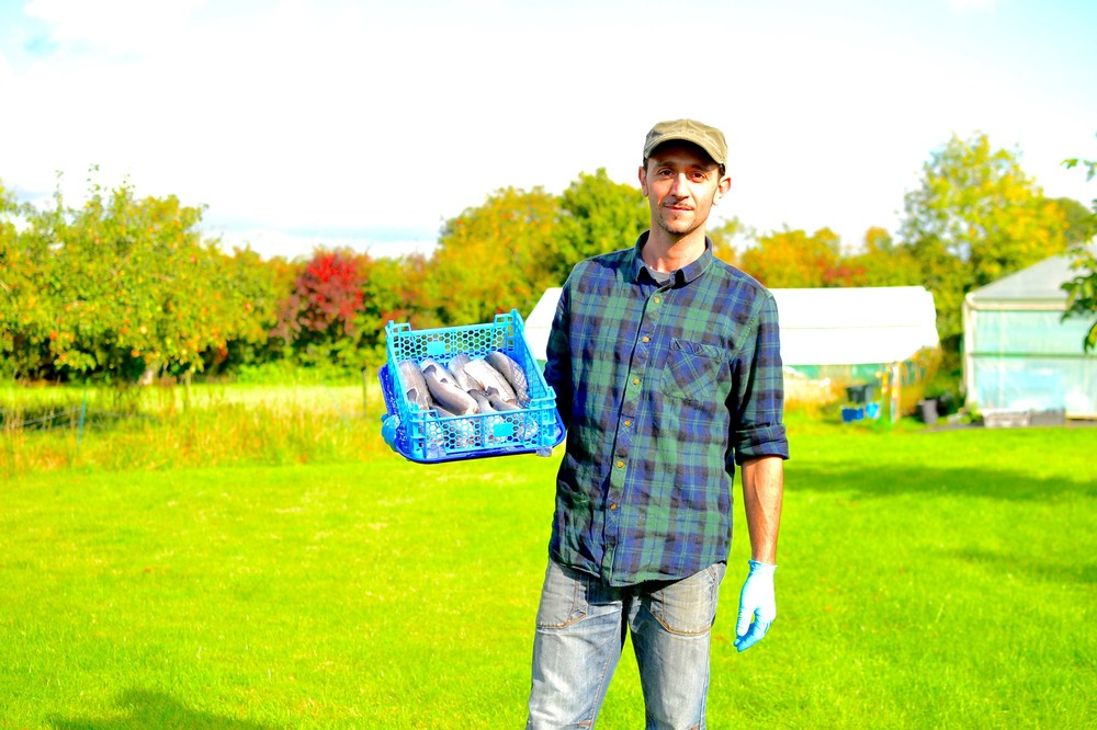 how to start a trout farming business
