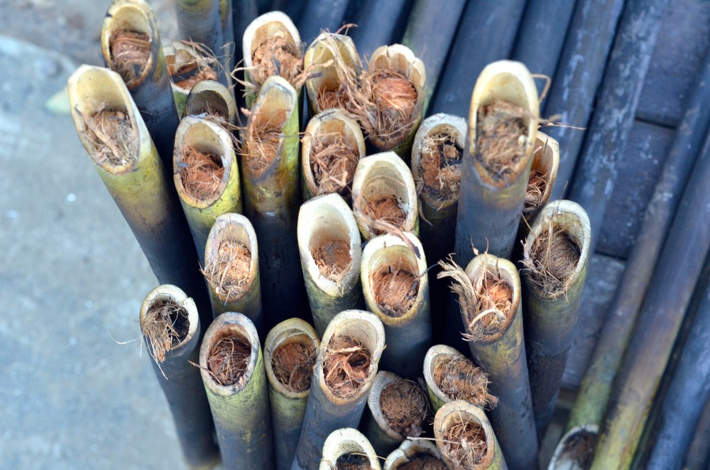 bamboo with sweet rice