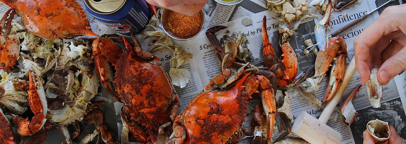 The Best Way to Get Crabs in Louisiana Is on the Bayou