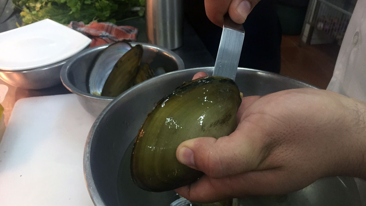 clam-bolivia-chef