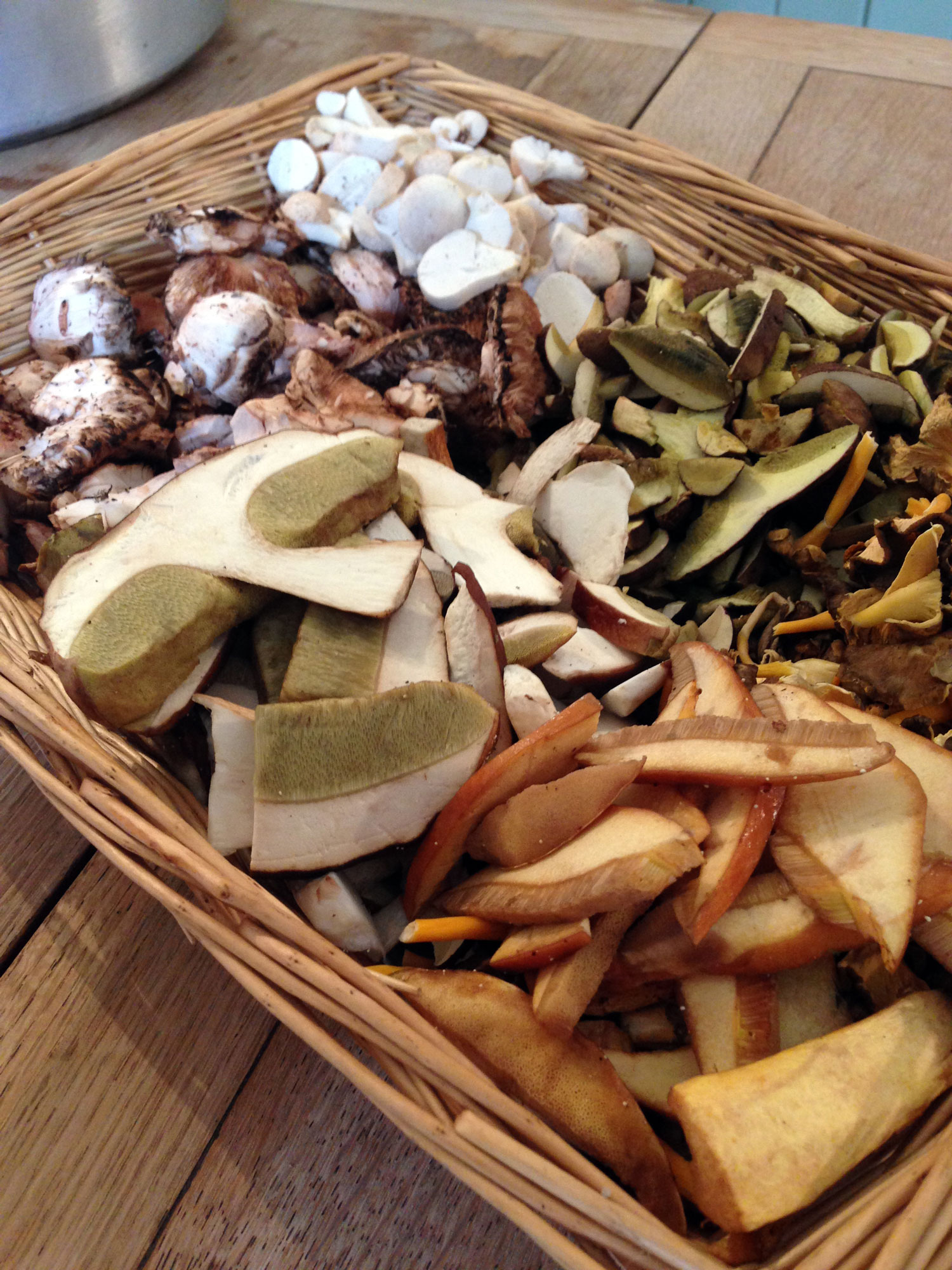 foraging-uk-working-clockwise-from-top-puffballs-bay-boletes-winter-chanterelles-larch-boletes-penny-buns-parasol-mushrooms