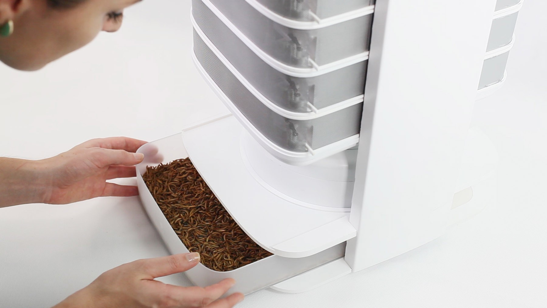 LIVIN Farms Edible Insect Hive