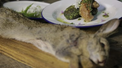 How-To: Cook Wild Rabbit