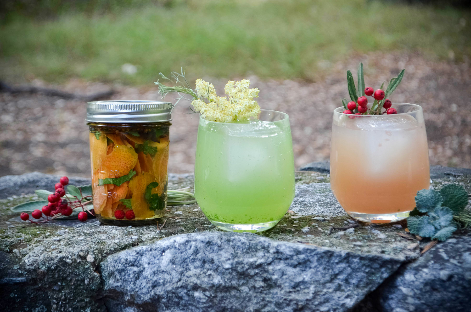 left-to-right-socal-grapefruit-bitters-grapefruit-and-sage-smash-the-wildcrafted-word_23580091292_o