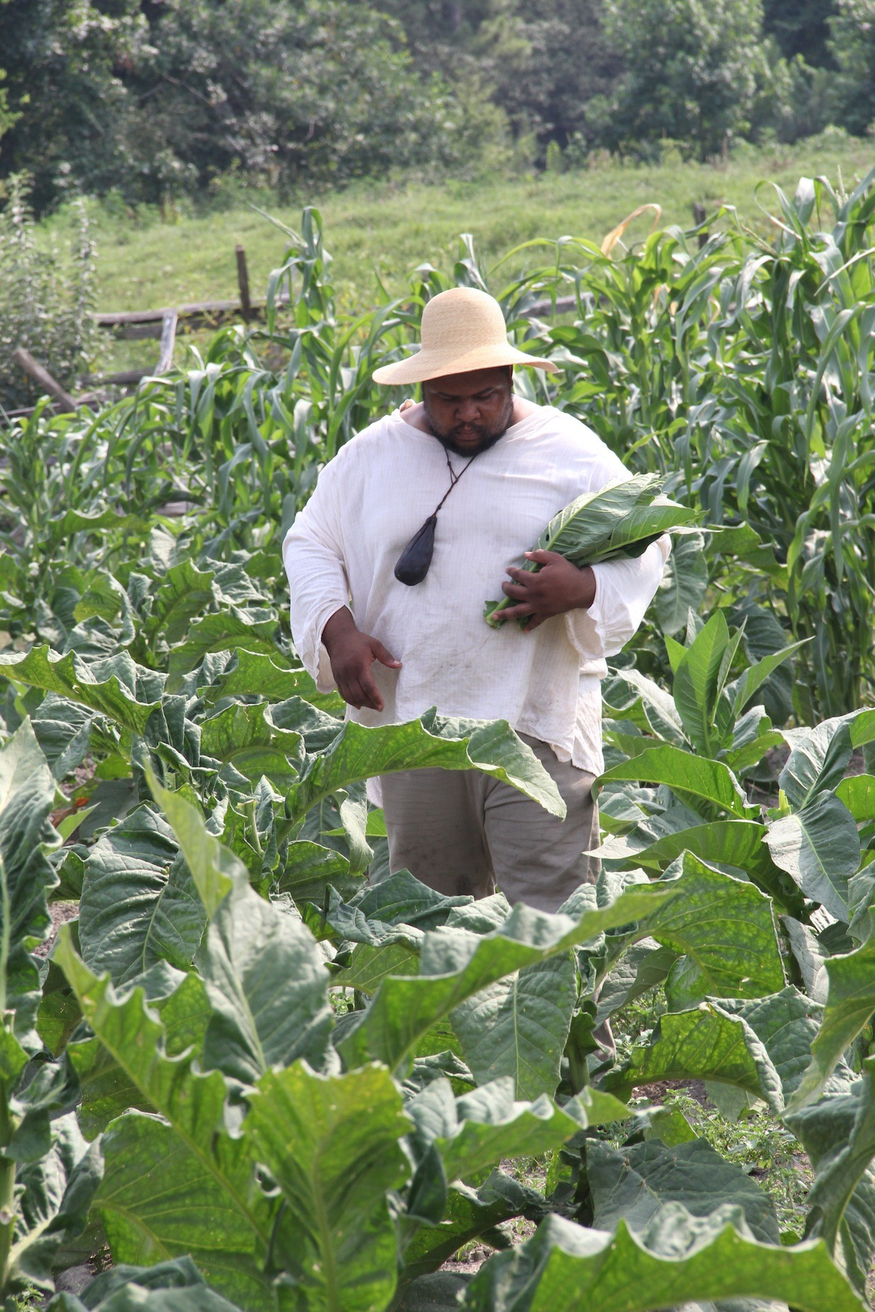 michael-twitty-in-tobacco-field