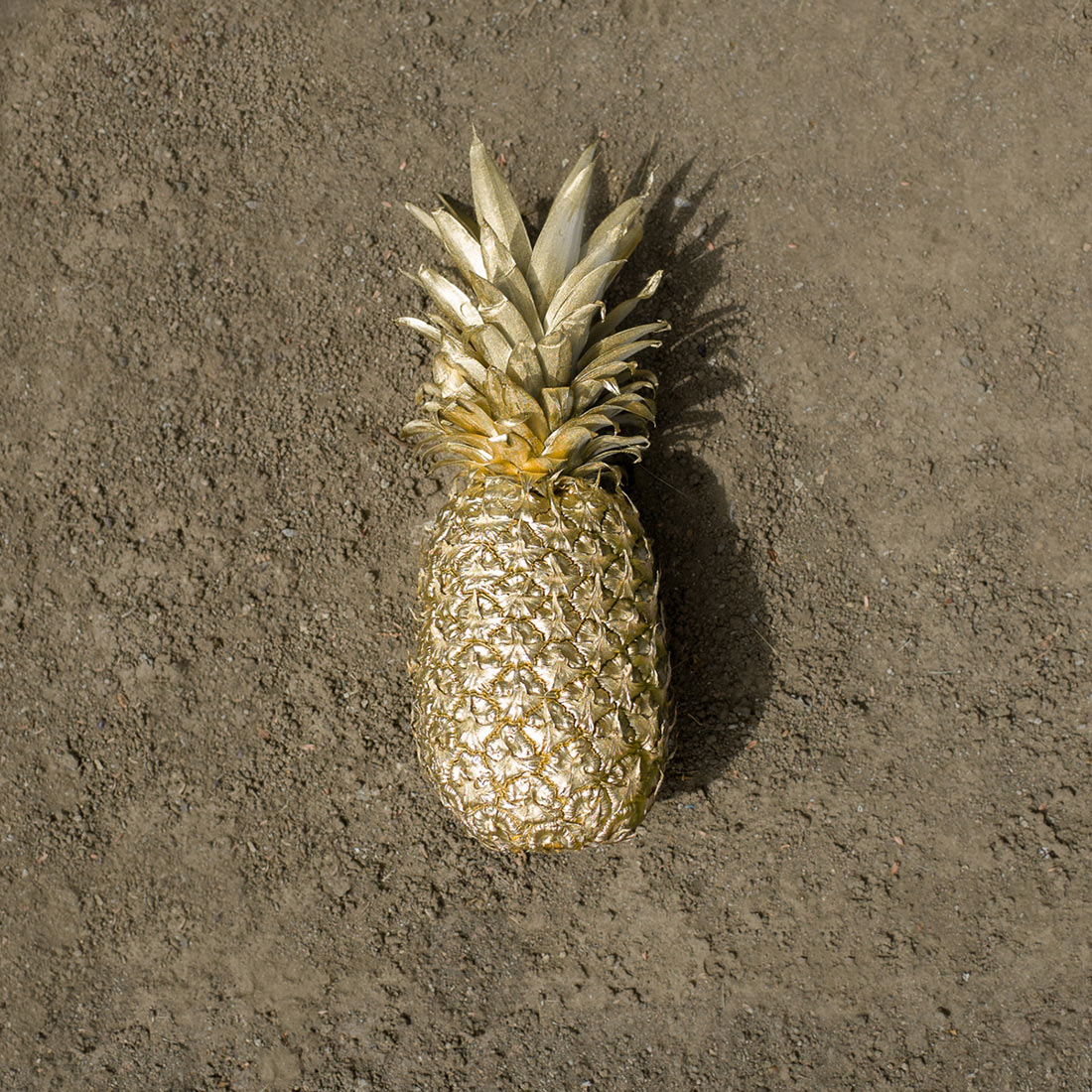 pineapple_edit