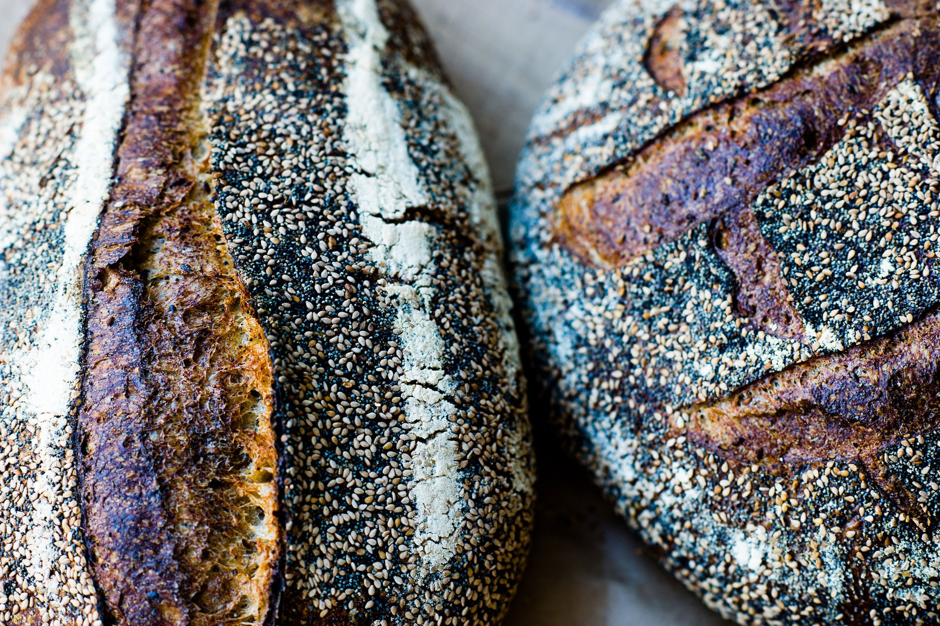 tartine-seed-loaves