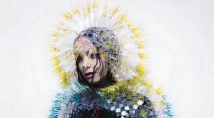 Bjork Taught Me How To Get Through A Breakup