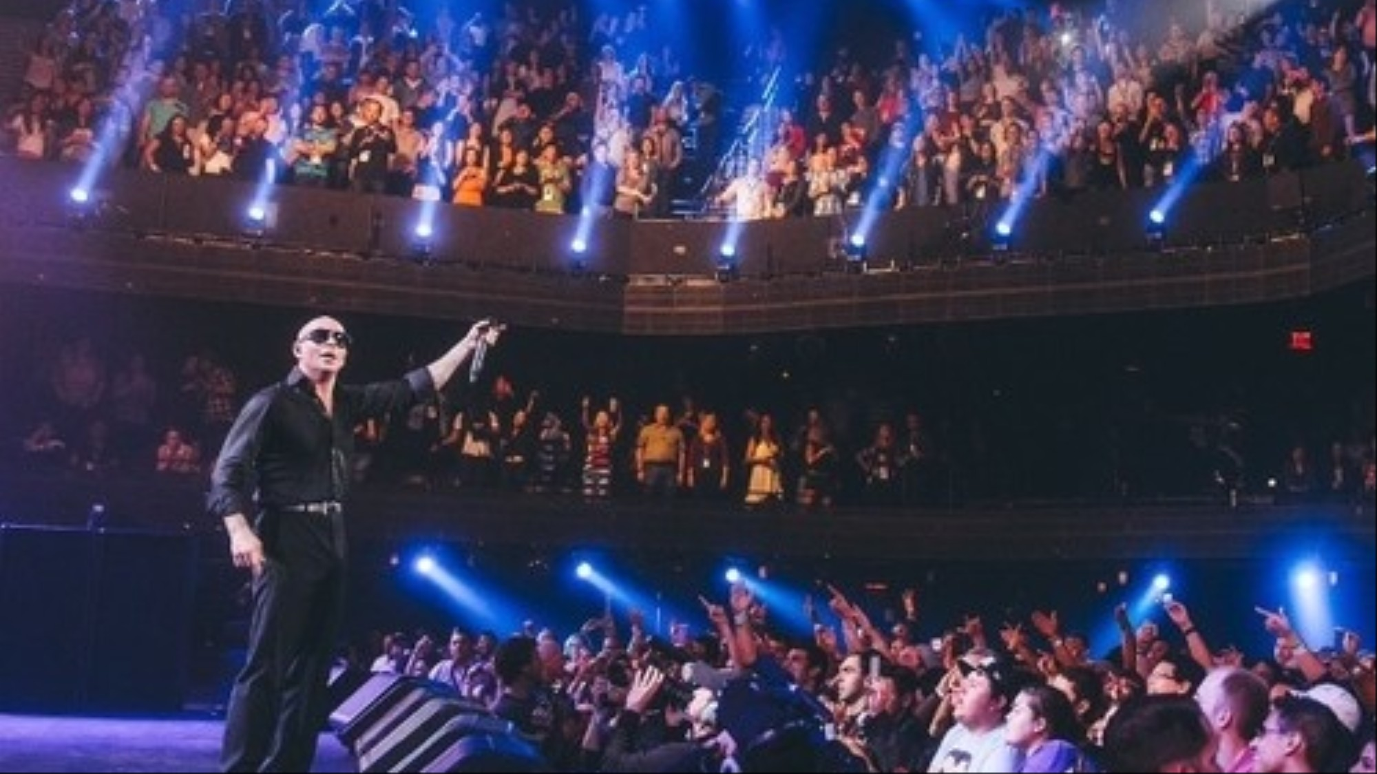 Last Night a Pitbull Concert Saved My Life - VICE