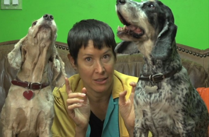 This Crazy Lady Has Made An Album Only Dogs Can Hear