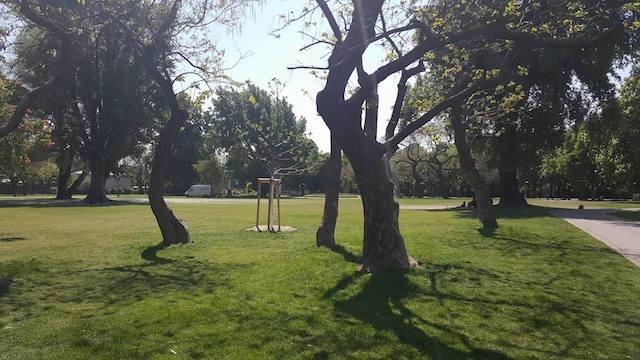 Wiener Parks Im Vorglühtest Noisey