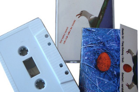New Music Releases From Chinese Creators New Pants And Carsick Cars