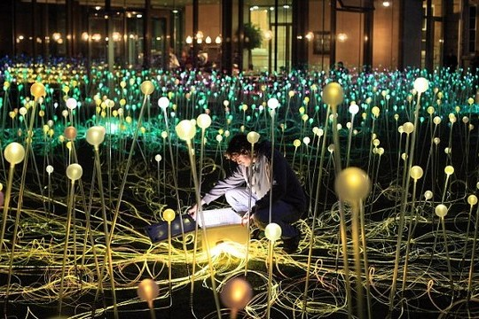 5,000 Fiber Optic Flowers Invade Museum Grounds In Field of Light